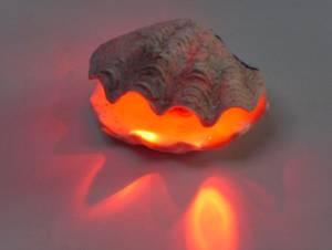 Muschel öffnet sich auf Knopfdruck und zeigt eine Kopfzelle im roten Licht